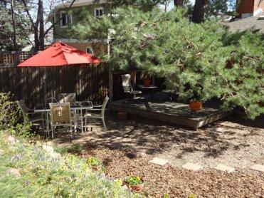 irisbackyard